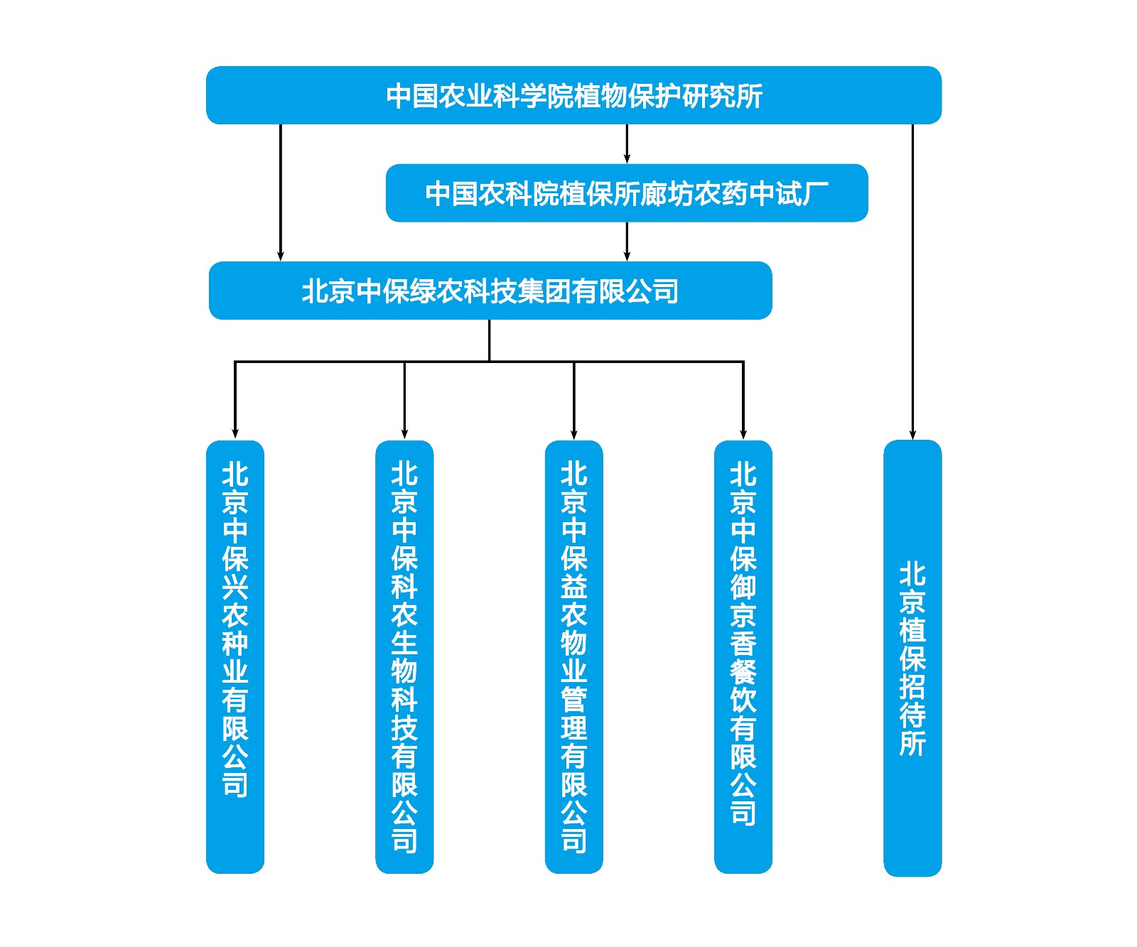 企业架构.jpg